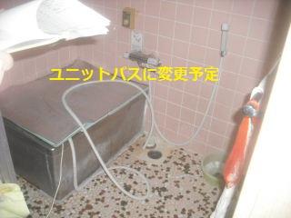 f0031037_174568.jpg