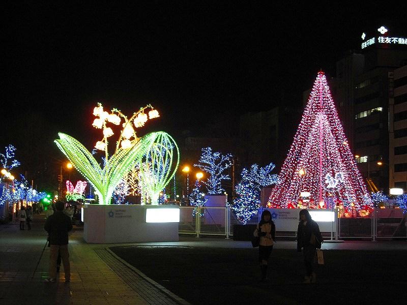 札幌大通り公園の美の祭典_e0237645_19241595.jpg