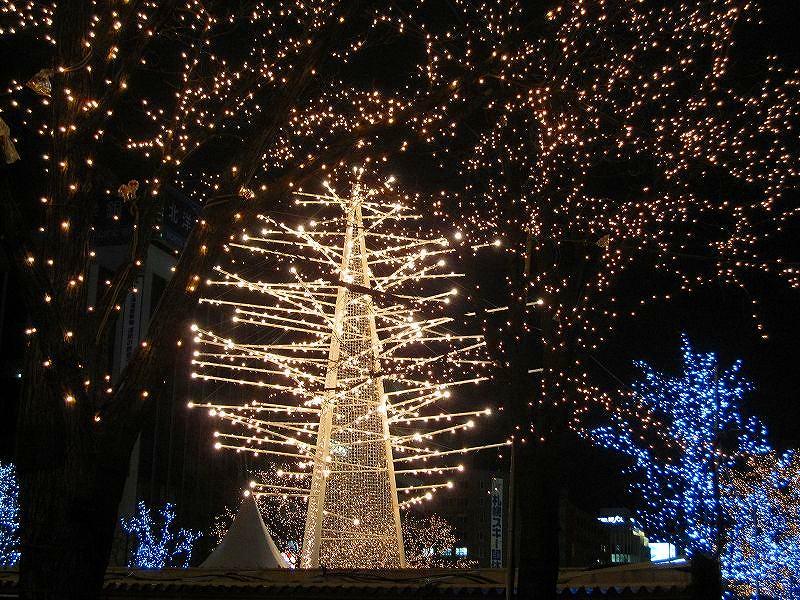 札幌大通り公園の美の祭典_e0237645_1927246.jpg