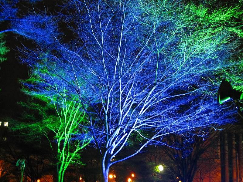 札幌大通り公園の美の祭典_e0237645_19302712.jpg