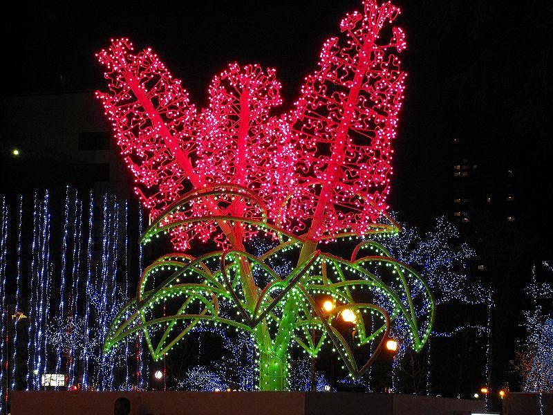札幌大通り公園の美の祭典_e0237645_19304582.jpg