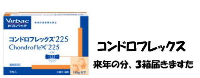 d0020869_12293684.jpg