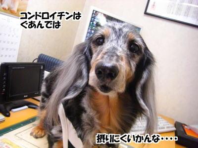 d0020869_123516.jpg