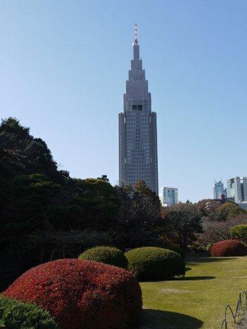 京都とはまた違う秋、新宿御苑の紅葉を見てきました_b0175688_8441516.jpg