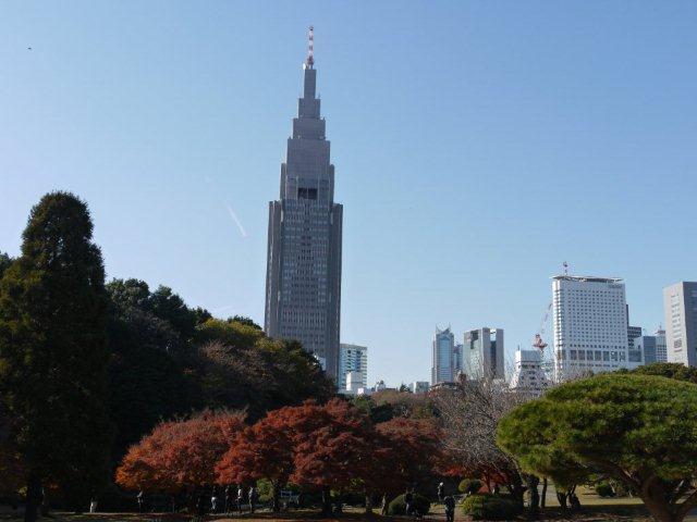 京都とはまた違う秋、新宿御苑の紅葉を見てきました_b0175688_8442726.jpg
