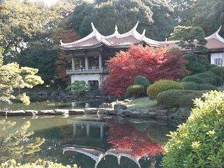 京都とはまた違う秋、新宿御苑の紅葉を見てきました_b0175688_846196.jpg