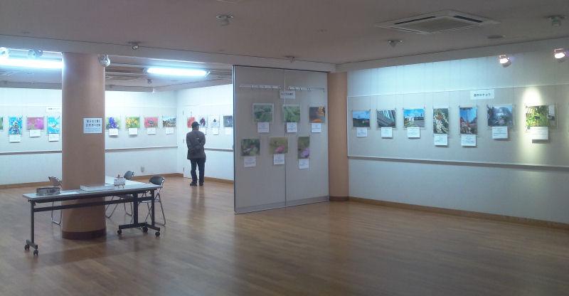 12月13日~18日 日本チョウ類保全協会主催「企画・写真展」のお知らせ_b0078795_18355798.jpg