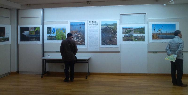 12月13日~18日 日本チョウ類保全協会主催「企画・写真展」のお知らせ_b0078795_1836360.jpg