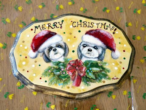 プーママにクリスマスプレゼント♪_c0090198_5454531.jpg