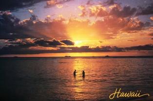 post card from Hawai'i_e0230141_1482837.jpg