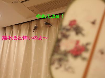 b0158061_0273745.jpg