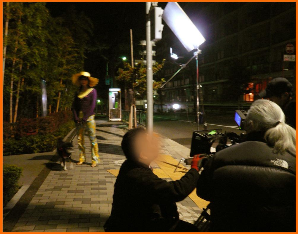 表参道イルミネーション散歩。ぼたんちゃんと静香ちゃん映画出演。_e0236072_2022823.jpg