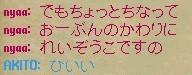 b0096491_3445658.jpg