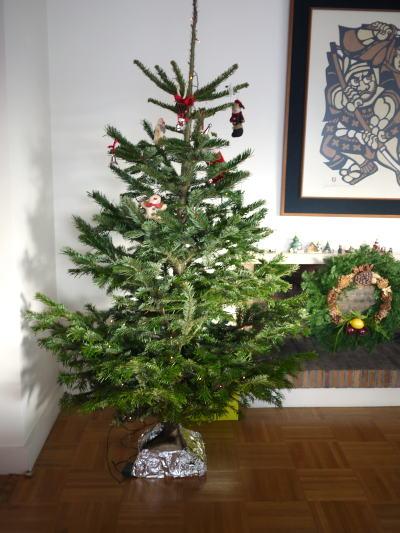 クリスマスオーナメント♪_c0090198_43729.jpg