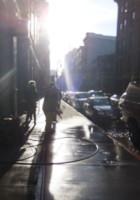 神々しさすら感じるニューヨークの冬の陽射し_b0007805_0192316.jpg