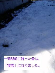 b0200310_15273116.jpg