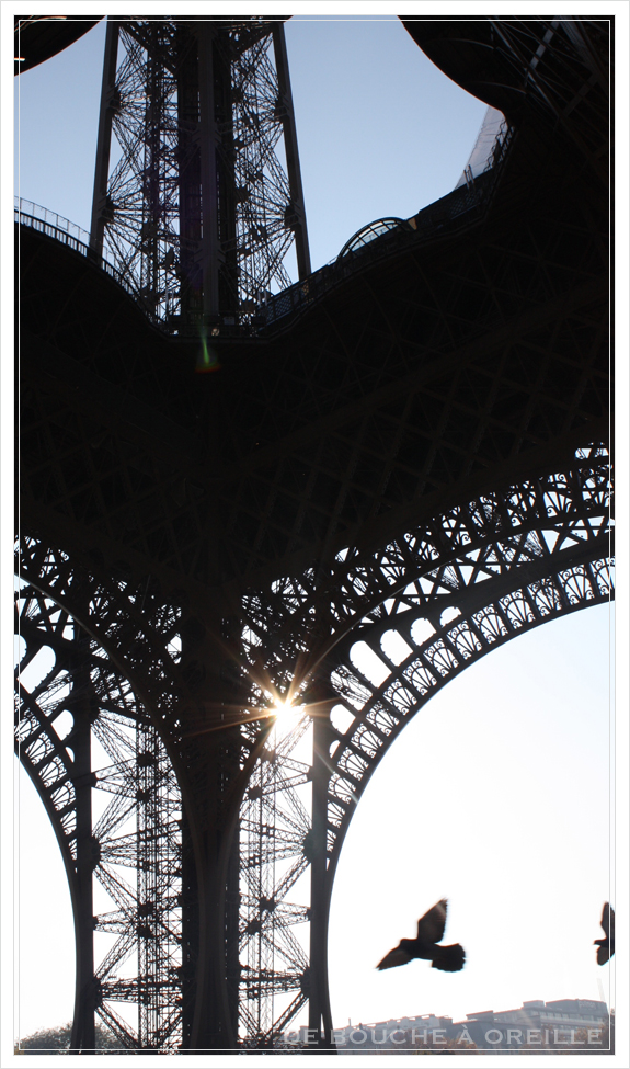 La tour Eiffel エッフェル塔_d0184921_1845143.jpg