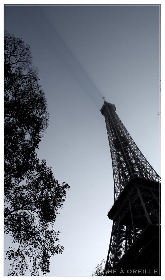 La tour Eiffel エッフェル塔_d0184921_18454543.jpg