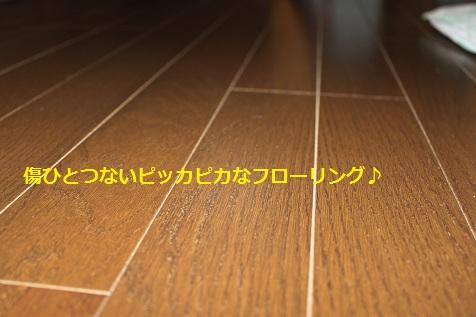 c0206342_1952437.jpg