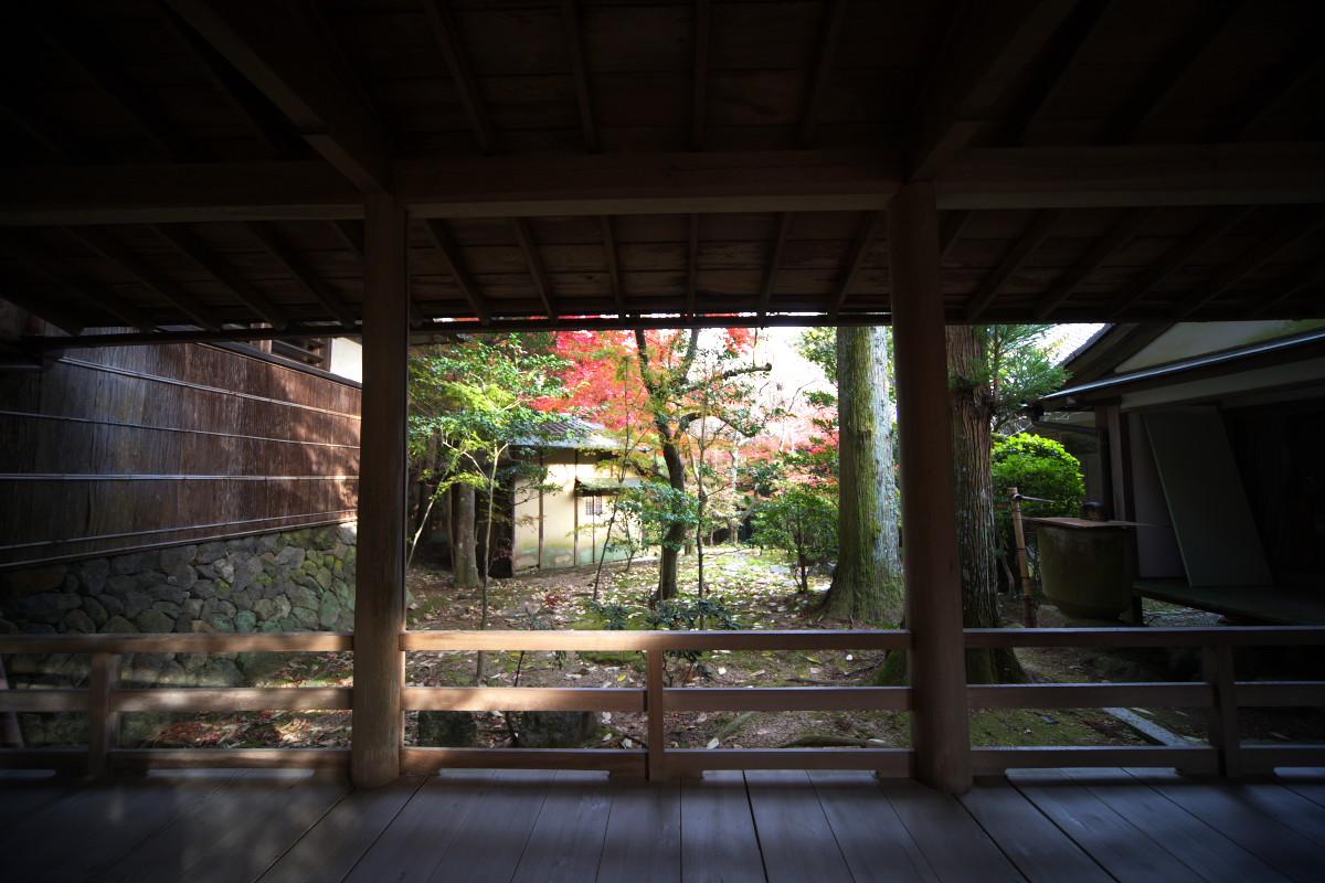紅葉 2011 西山 大原野神社_f0021869_10503641.jpg
