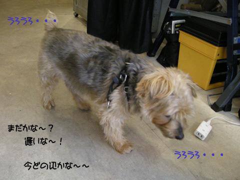 b0249672_19495530.jpg