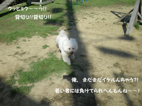 b0249672_20161067.jpg