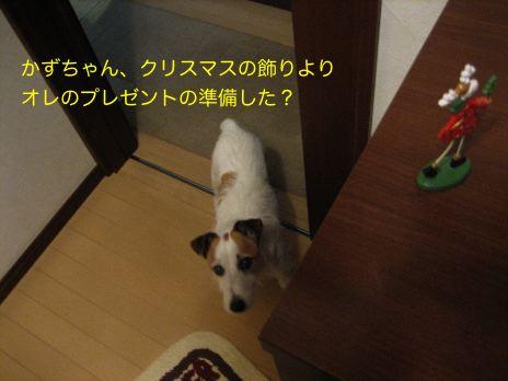 c0179472_20145042.jpg