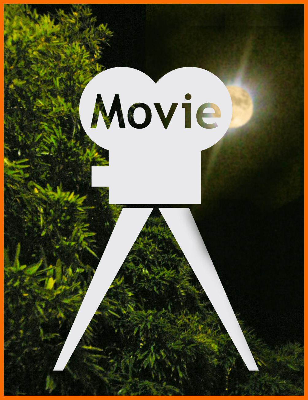 表参道イルミネーション散歩。ぼたんちゃんと静香ちゃん映画出演。_e0236072_1263822.jpg
