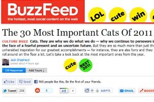 今年ソーシャル・メディア上で話題になった最も重要な30匹の猫ちゃん The 30 Most Important Cats Of 2011_b0007805_13121853.jpg