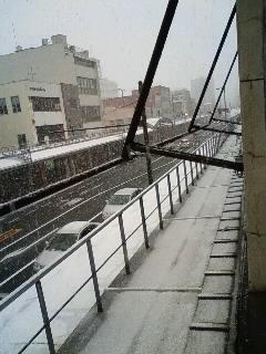 雪です。_b0125413_1529033.jpg