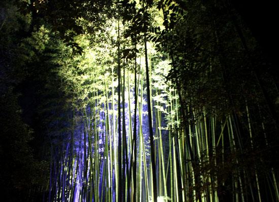 京都・嵐山花灯路ー2011_e0048413_1856368.jpg