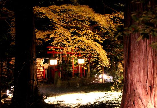 京都・嵐山花灯路ー2011_e0048413_18565485.jpg