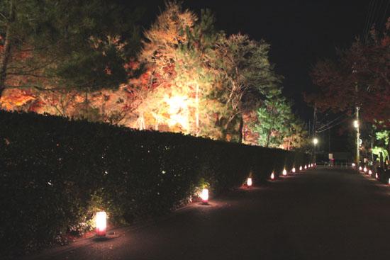 京都・嵐山花灯路ー2011_e0048413_1857859.jpg