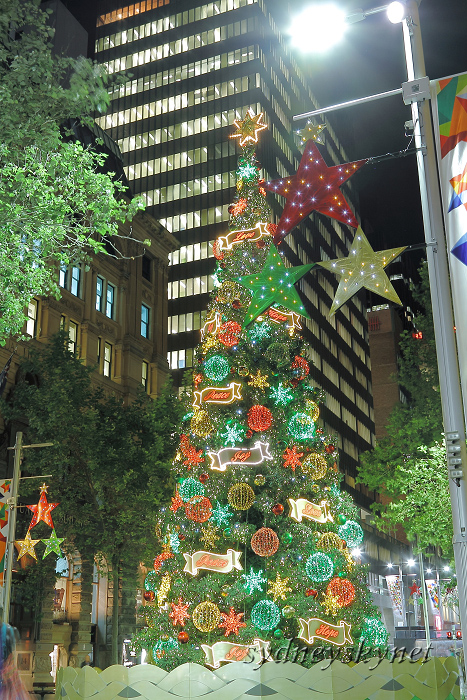 Merry Christmas 2011 Martin Place_f0084337_12172252.jpg