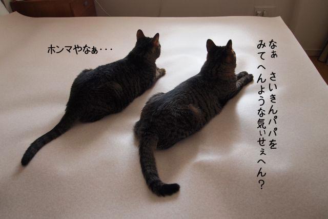 f0116546_164472.jpg