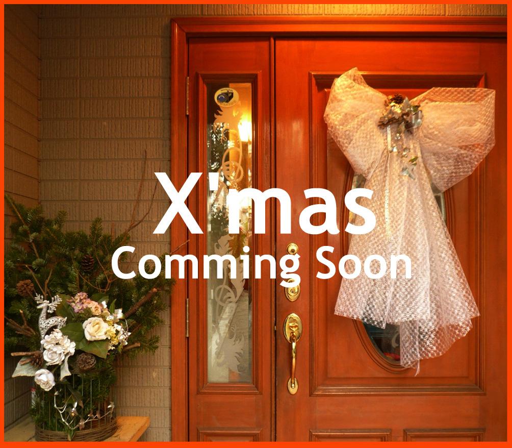 """静香家のクリスマス・デコレーション。""""はやく来て~~ェ!""""_e0236072_19453759.jpg"""
