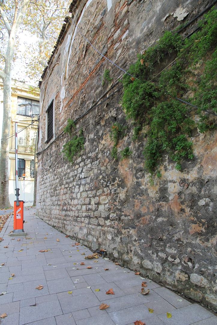 トルコ考古学博物館見学ガイダンス イスタンブール その17_a0107574_1941940.jpg