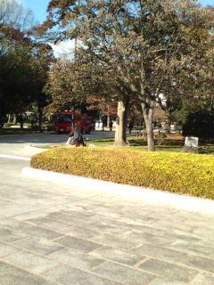 平和公園の年末大掃除に消防車活躍_e0094315_2025175.jpg