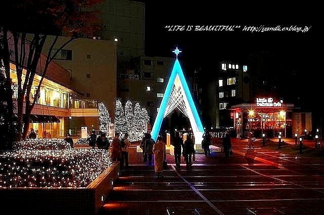 Xmas Illumination 2011_d0083623_1453039.jpg
