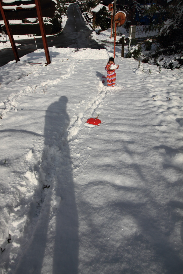 雪の晴れ間に^^_b0157849_1634534.jpg