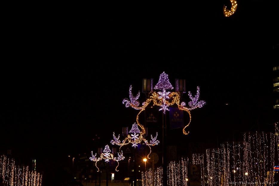 OSAKA光のルネサンス2011~後編_f0102363_17583694.jpg