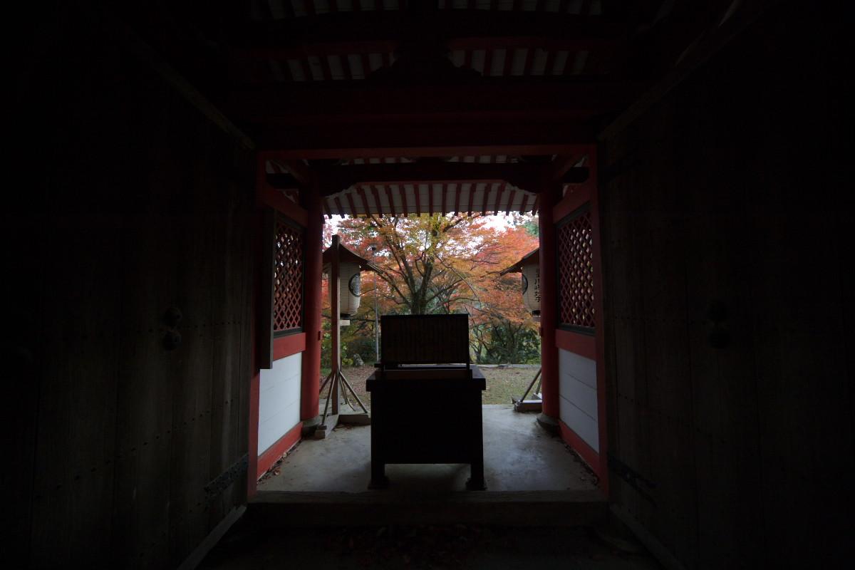 紅葉 2011 西山 金蔵寺_f0021869_13595151.jpg