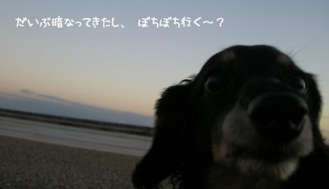 b0249672_1830510.jpg
