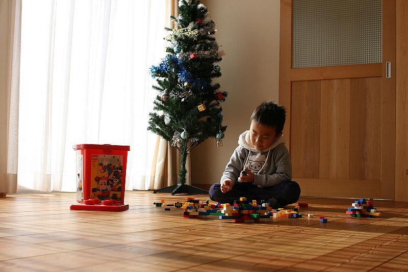 東細谷町の家 完成写真_e0145995_18341188.jpg