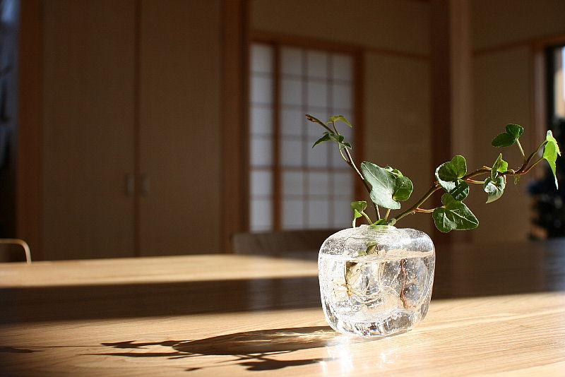 東細谷町の家 完成写真_e0145995_18351667.jpg
