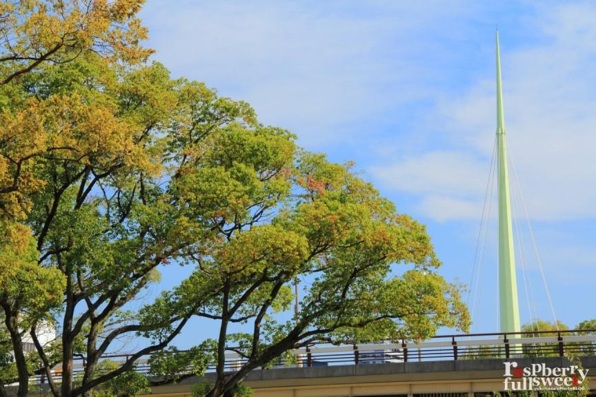 天神橋 / 界隈_b0234699_2325519.jpg