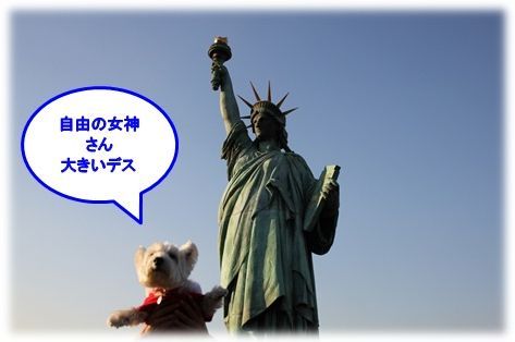a0161111_12321149.jpg