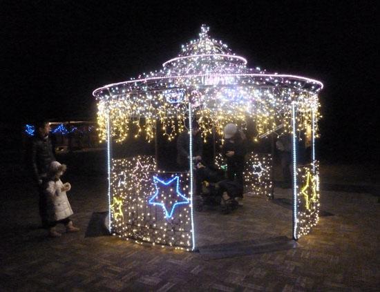 府立植物園 クリスマスイルミネーション_e0048413_21351279.jpg