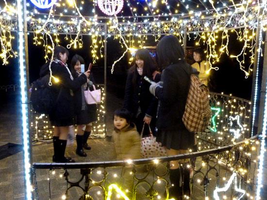 府立植物園 クリスマスイルミネーション_e0048413_2135259.jpg