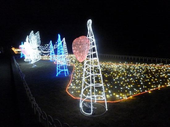 府立植物園 クリスマスイルミネーション_e0048413_21355284.jpg